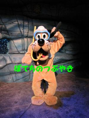 IMG_9475_20101021213915.jpg