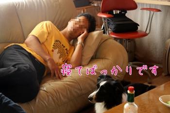 2011080616.jpg