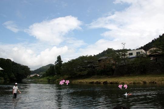 201108064.jpg