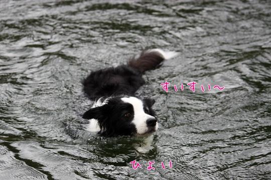 201108068.jpg