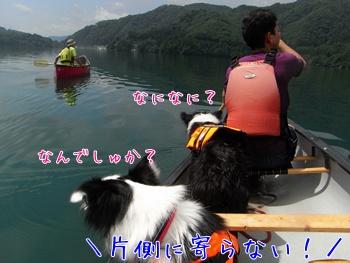 201108081217.jpg