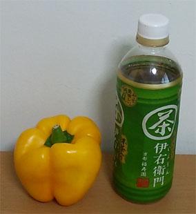 パブリカ戸沢村20140926