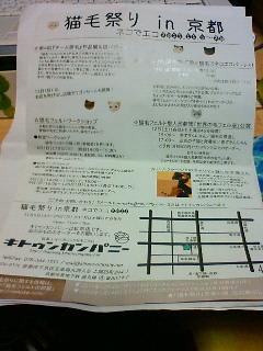 ネコでエコ 【猫毛祭りin京都】