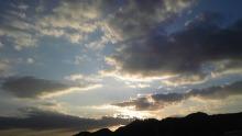 primevere  blog-091228_163558_ed.jpg