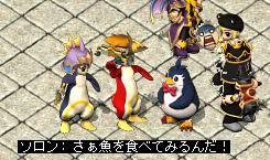 ペンギン対決