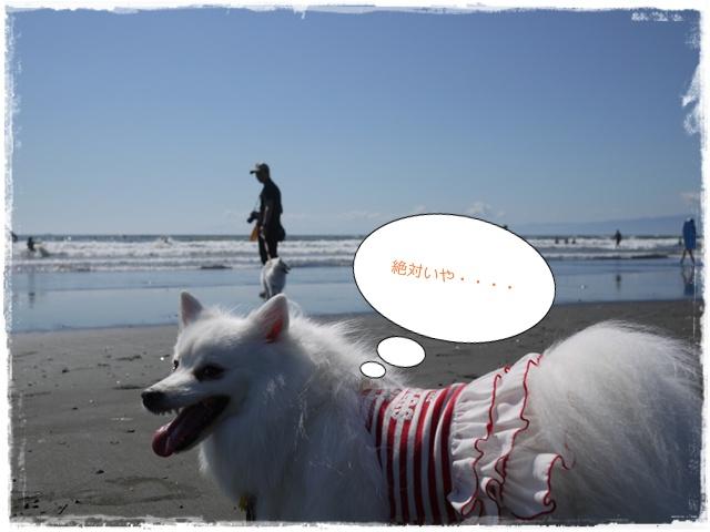 18_20101012200254.jpg