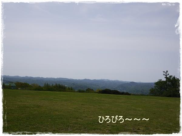 P1030901.jpg