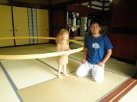 上畠アート2011