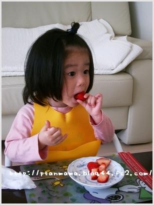 CIMG0053_20100308160924.jpg