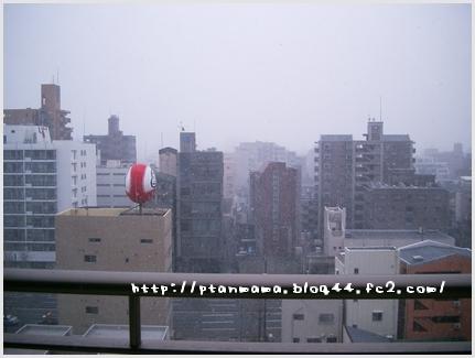CIMG0120_20100310143857.jpg