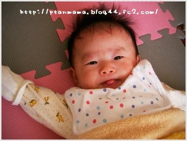 CIMG0184_20100221212250.jpg