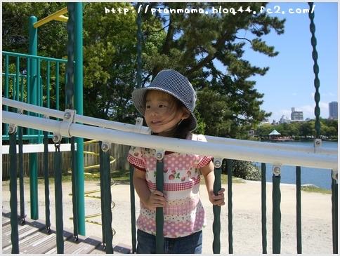 CIMG0336.jpg