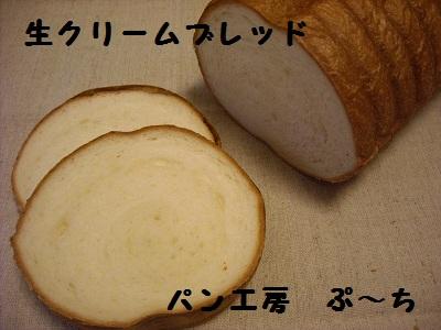 DSCN3069.jpg