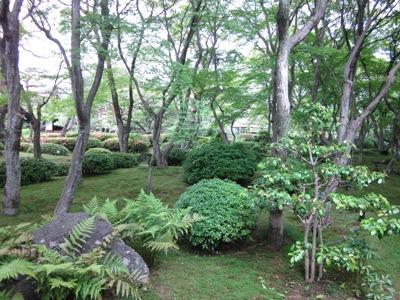 庭内風景1