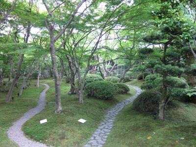 庭内風景2