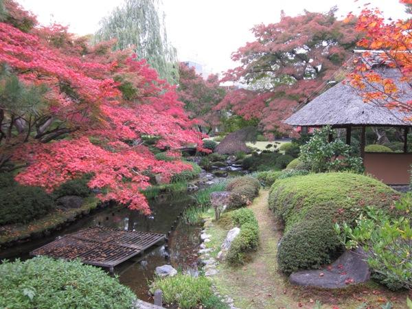 小さな隠れ里@in天使の里、秋のお庭で