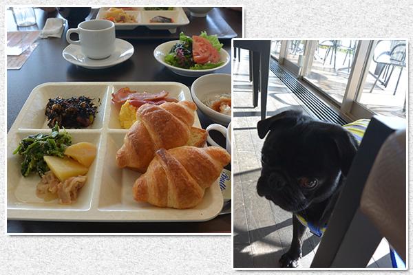 レストランで朝ご飯