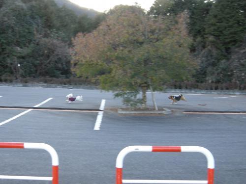 2012_0126BR_convert_20120131185022.jpg