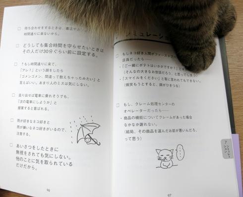 ネコ好き自分の取扱書見てみます