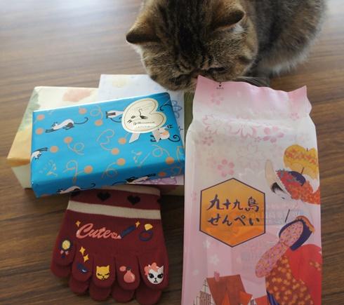 7)ノンさんからのプレゼント