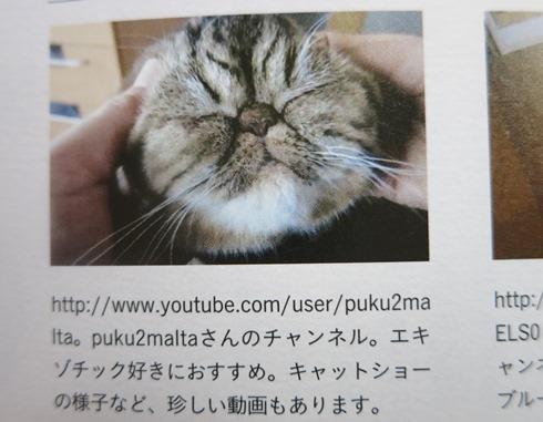 6)ちょっぴり掲載(笑)