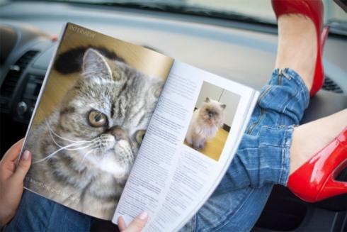 1)珍しい雑誌読んでます