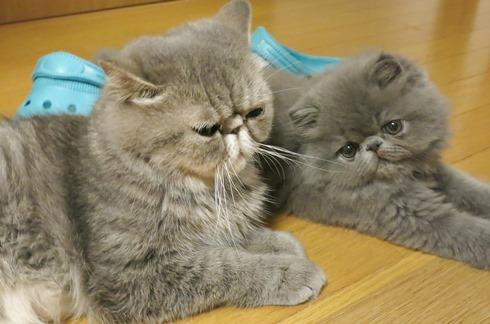 3)ママと2ショット