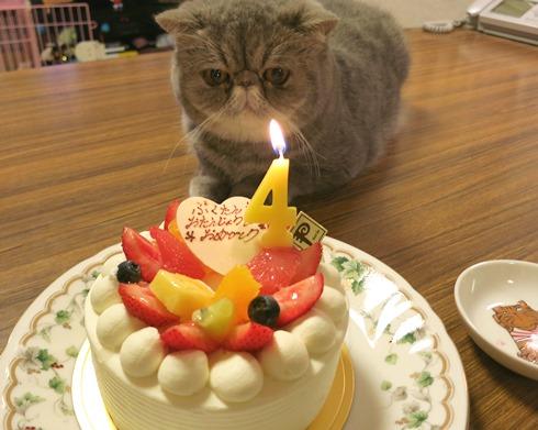 8)お誕生日おめでとう