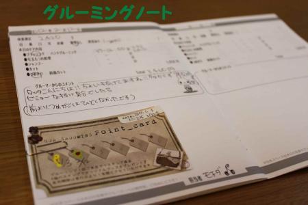120212-1_convert_20120212234243.jpg