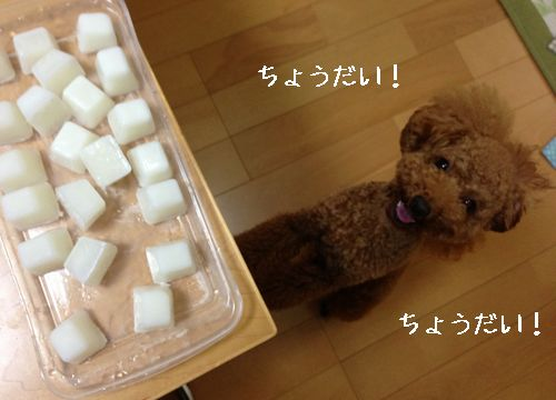 ミルクキューブ