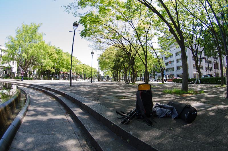 DSC_8890.jpg