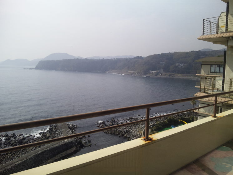 旅館から眺める海