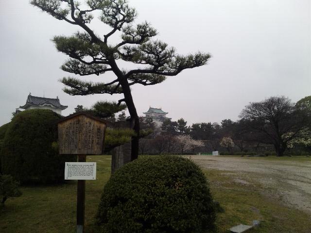 名古屋城を遠方から見る★