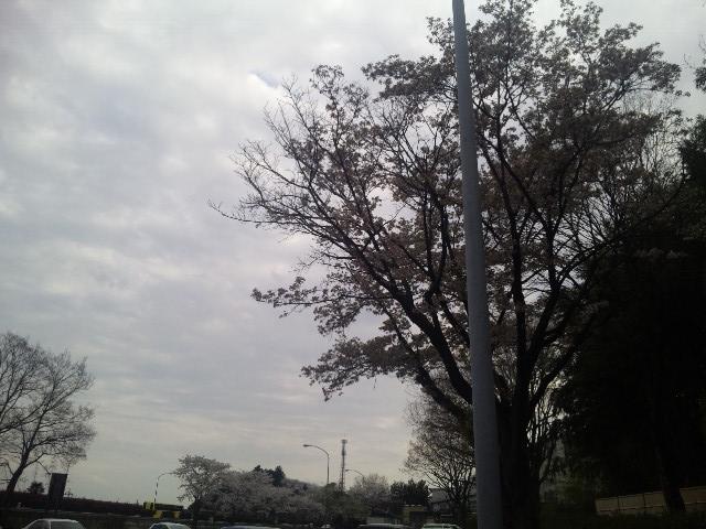 ある曇った日の空
