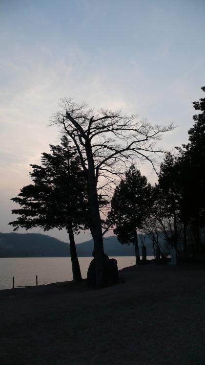 夕日に浮かぶ影