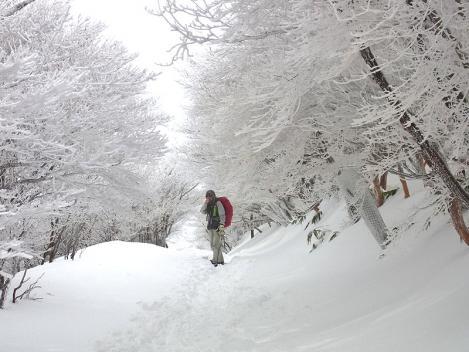 御在所スノーハイク-41b