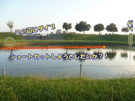 P1020352.jpg