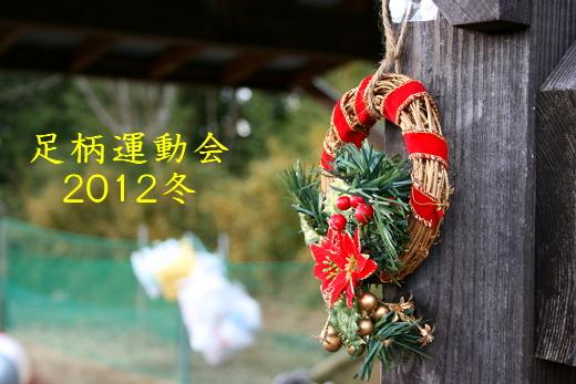 IMG_1368_20121226224241.jpg
