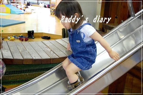 DSC_0701_20100616005614.jpg