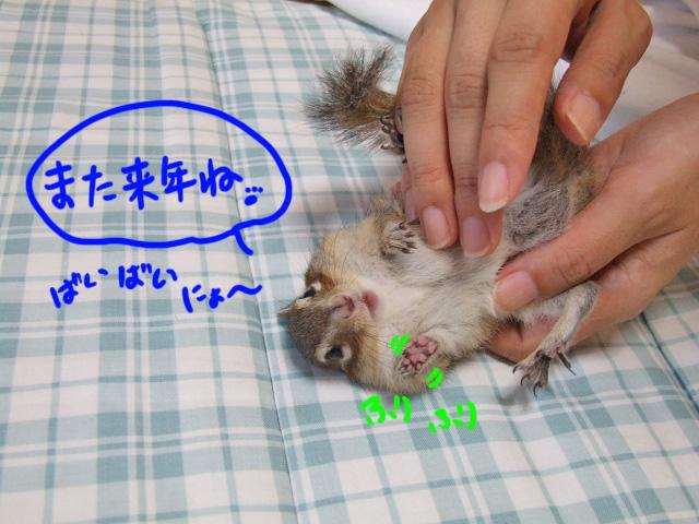 DSCF011009f7161.jpg