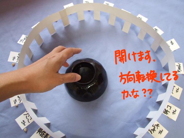 DSCF100930g8875.jpg