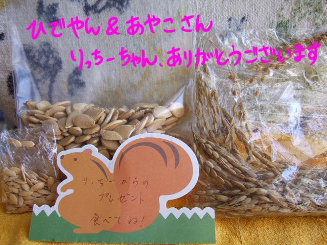DSCF101007a8903.jpg
