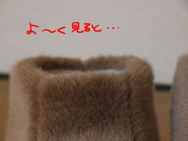 DSCF101216b9773.jpg