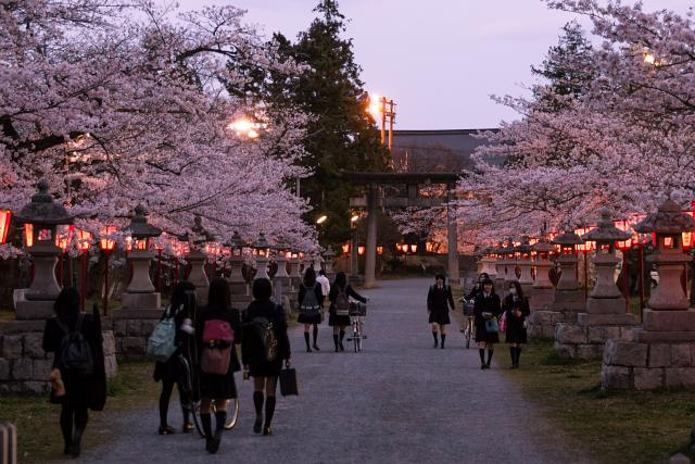 女子高生のやたら多い神社参道