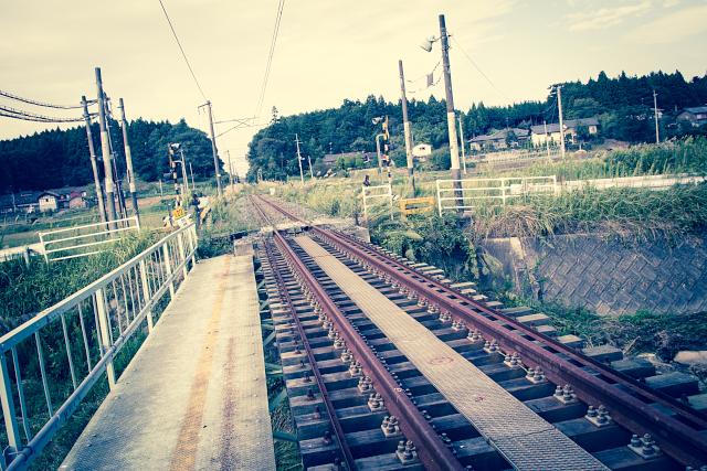 _MG_1335.jpg