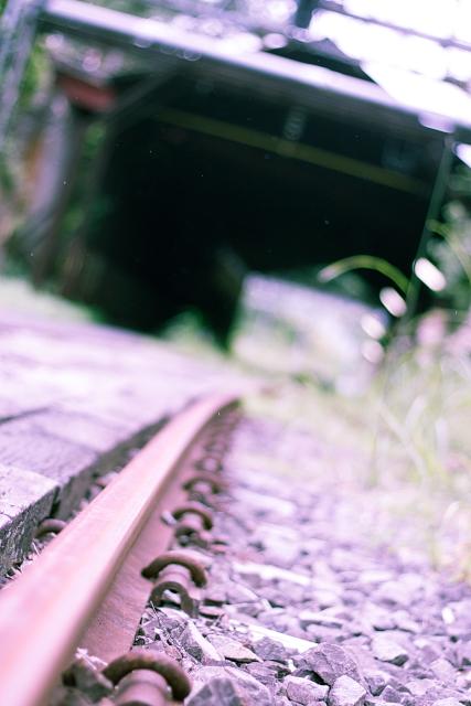 _MG_5120.jpg