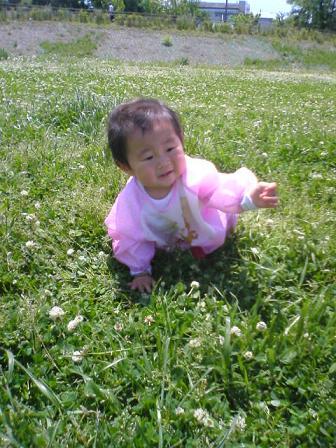 草むらの次女ちゃん。