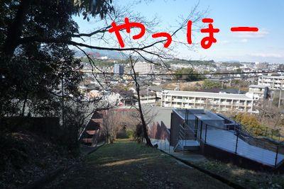 25-1-14c.jpg