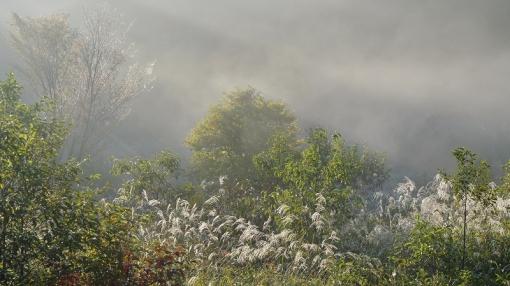 3440霧が谷141084