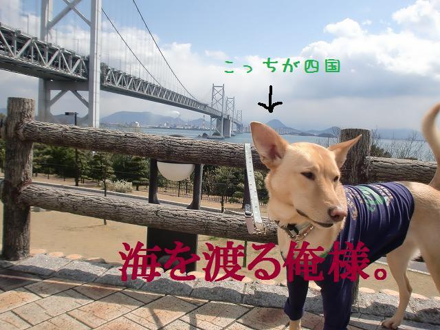 瀬戸大橋旅情